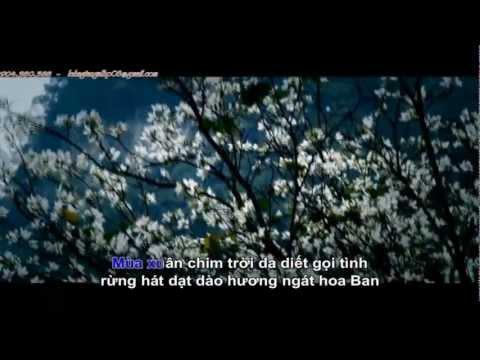 Hoa Ban Trắng [ HD Music Video ] Karaoke