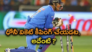 India vs South Africa 5th ODI : Dhoni Doesn