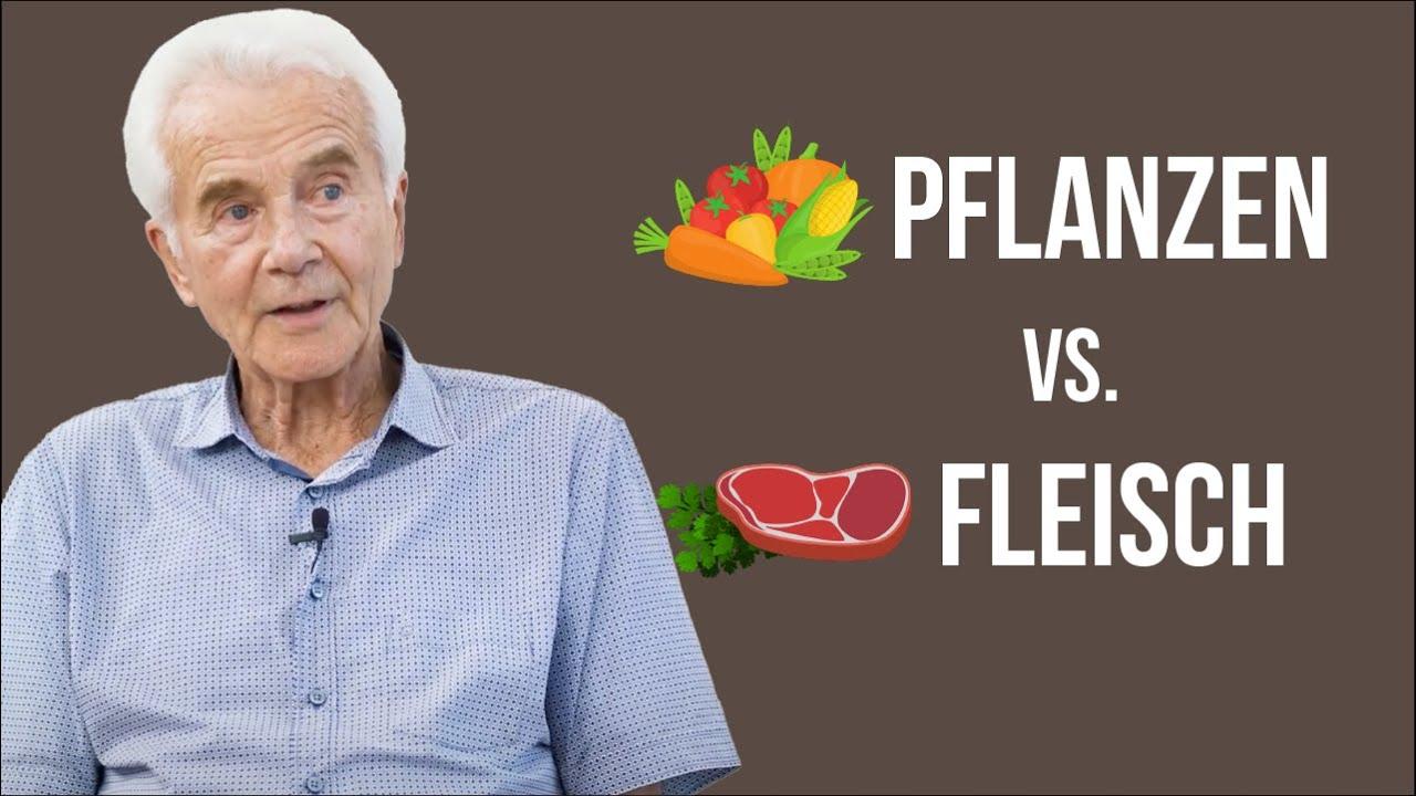 Ist der Mensch Pflanzen- oder Fleischfresser? (Evolution)