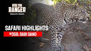 Idube Safari Highlights #359: 16 - 19 August 2015 (Latest Sightings) (4K Video)