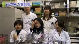 麻布大学 研究室紹介29_大仲 賢二講師