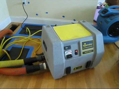 Hardwood Floor Drying  Wet Hardwood Floors Water Damage  Flooded Wood Floors  YouTube