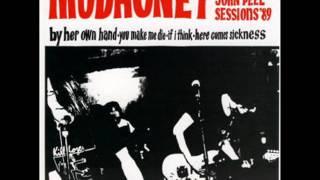 Mudhoney - Here Comes Sickness (John Peel session 1989)