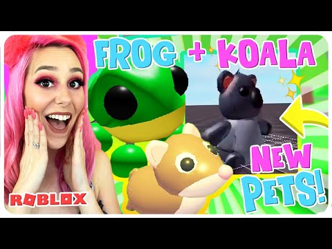 New Pets Koala Frog Pet In Adopt Me New Aussie Egg Updates In Roblox Adopt Me Youtube