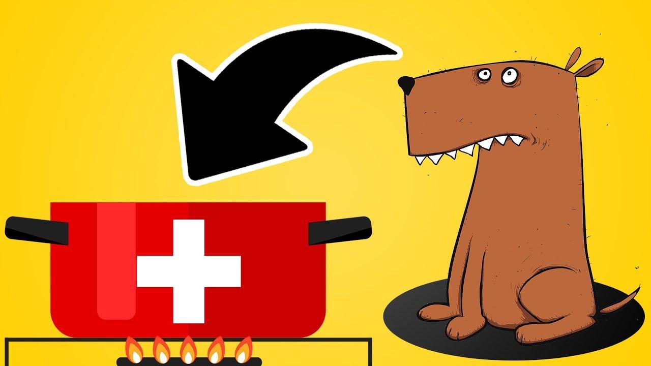 8 Gesetze Die Es Nur In Der Schweiz Gibt Youtube