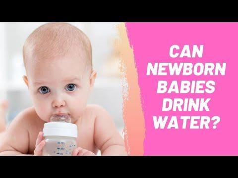 Can Newborn Babies Drink Water