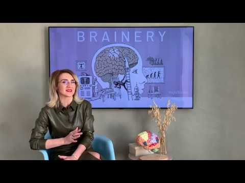 🧠 Brainery - The Neuroscience of Change