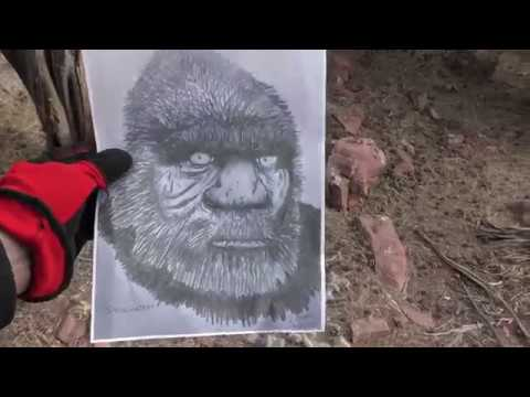 "Bigfoot On Video  ""Full Video""  Vortex Area"