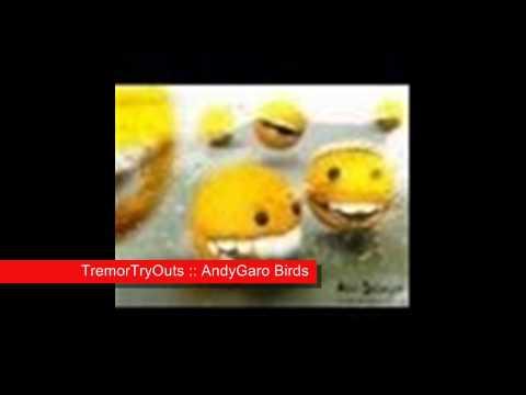 TremorTryOuts - AndyGaro Birds