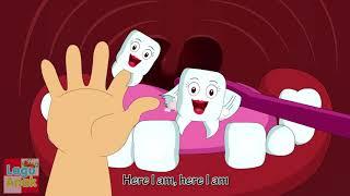 Finger Family Song - Teeth Family - Keluarga Gigi Finger Family Nursery Rhyme