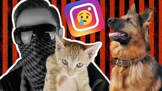 ODHALOVÁNÍ FEJKŮ ● Týrání zvířat na Instagramu