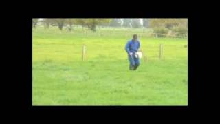 Putting up an electric fence on a New Zealand Dairy Farm