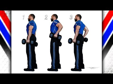 Traps Shrugs Elbow Flex 2 Dumbbell