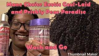 Mane Choice Exotic Cool-Laid + Prickly Pear Paradise Wash and Go (LOC Method on 3C/4A Natural Hair)