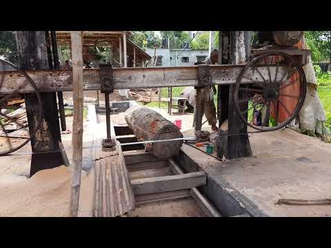 Dangerous Underground Machine Cutting Dry Wood।Wood Cutting Underground Machine at Village Side Asia