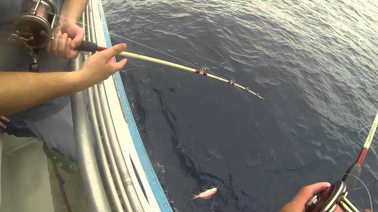 Capt john deep sea fishing trip galveston tx pt 2 720p for Deep sea fishing galveston