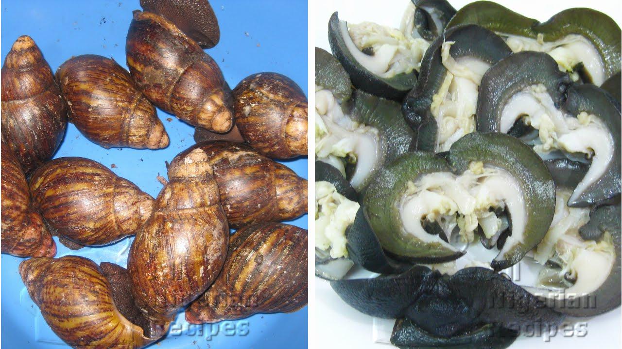 Grape snail: cooking recipe. Snail Food 9