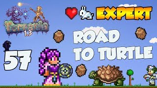 Terraria 1.3 Expert Let's Play -  ROAD TO TURTLE ARMOUR [57]