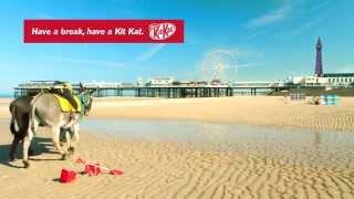 Kitkat: KITKAT UK Cone Donkeys