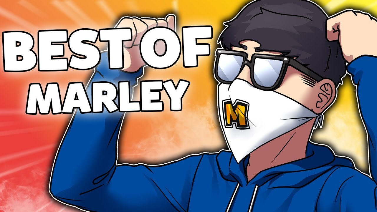 Download Marley's BEST OF 2020 - Rainbow Six Siege