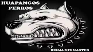 HUAPANGOS PERROS ( REMIX )