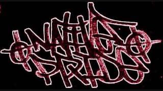 Warrior Song Forever Rain (Native Rapper)