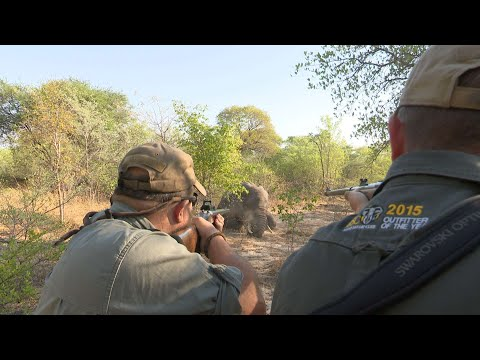 Elephant Hunting in the Caprivi by the Best!