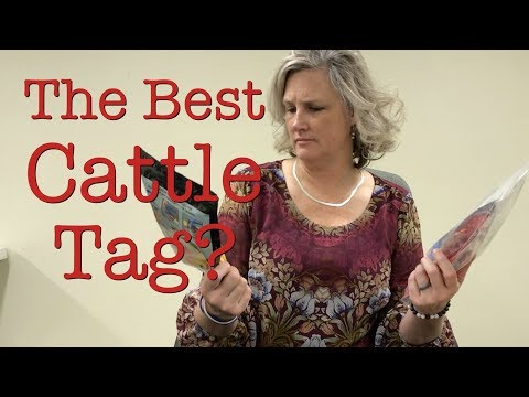 Choosing The Best Ear Tags For Cattle And Sheep | Jeffers Livestock