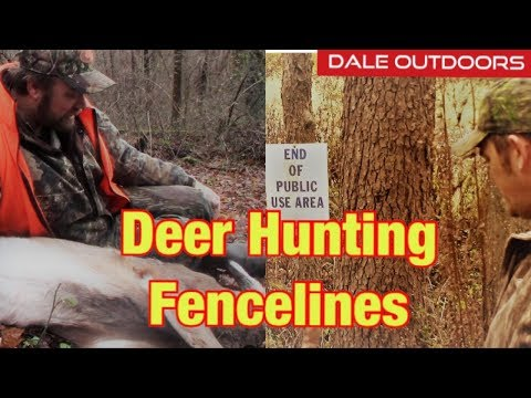 DEER HUNTING On Fence Lines / Dealing With HUNTING Pressure