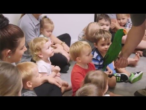 Petit Early Learning Journey - YouTube