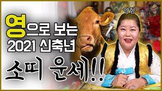 """[소띠운세] """"영으로 보는"""" 2021 신축년 소띠 운세!!! 영험하신 산군장군님이 다 말해…"""