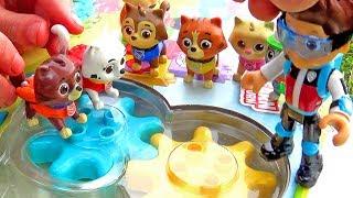 Щенячий Патруль - Площадка для котят - Все серии. Paw Patrol Pup fu and kitty.