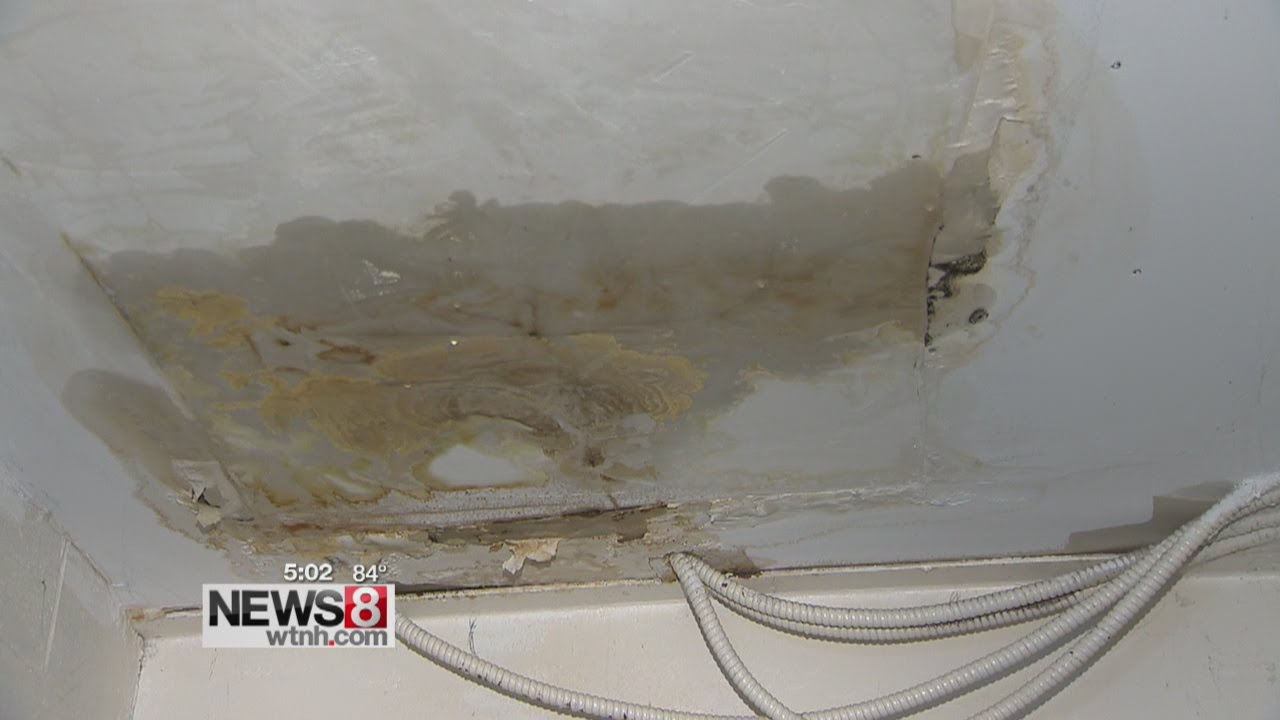 West Haven Locals Say Mold Problems Persist In Spring Realty Apartment  Building