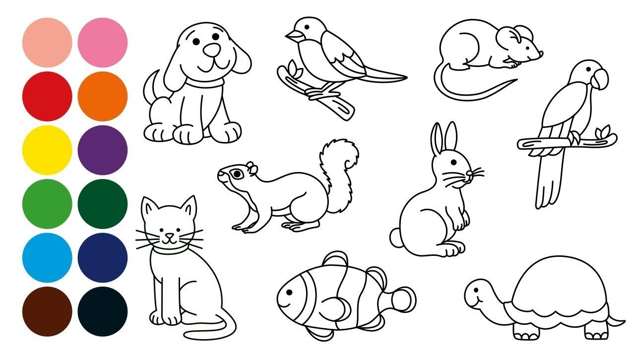 ANIMALES DOMESTICOS aprender a dibujar y colorear para niños - Dibujos para niños con Mozart