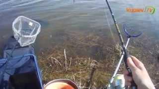 Рыбалка на Оке  часть 3 Волжанка Оптима 2.7(9ft) 25+