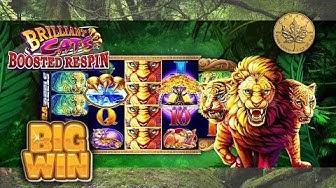 BIG WIN - BRILLIANT CATS - Slot Machine Bonus