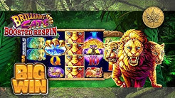 BIG WIN - BRILLIANT CATS - Slot Machine Bonus
