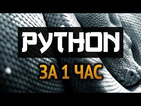 Учим Python за 1 час! #От Профессионала