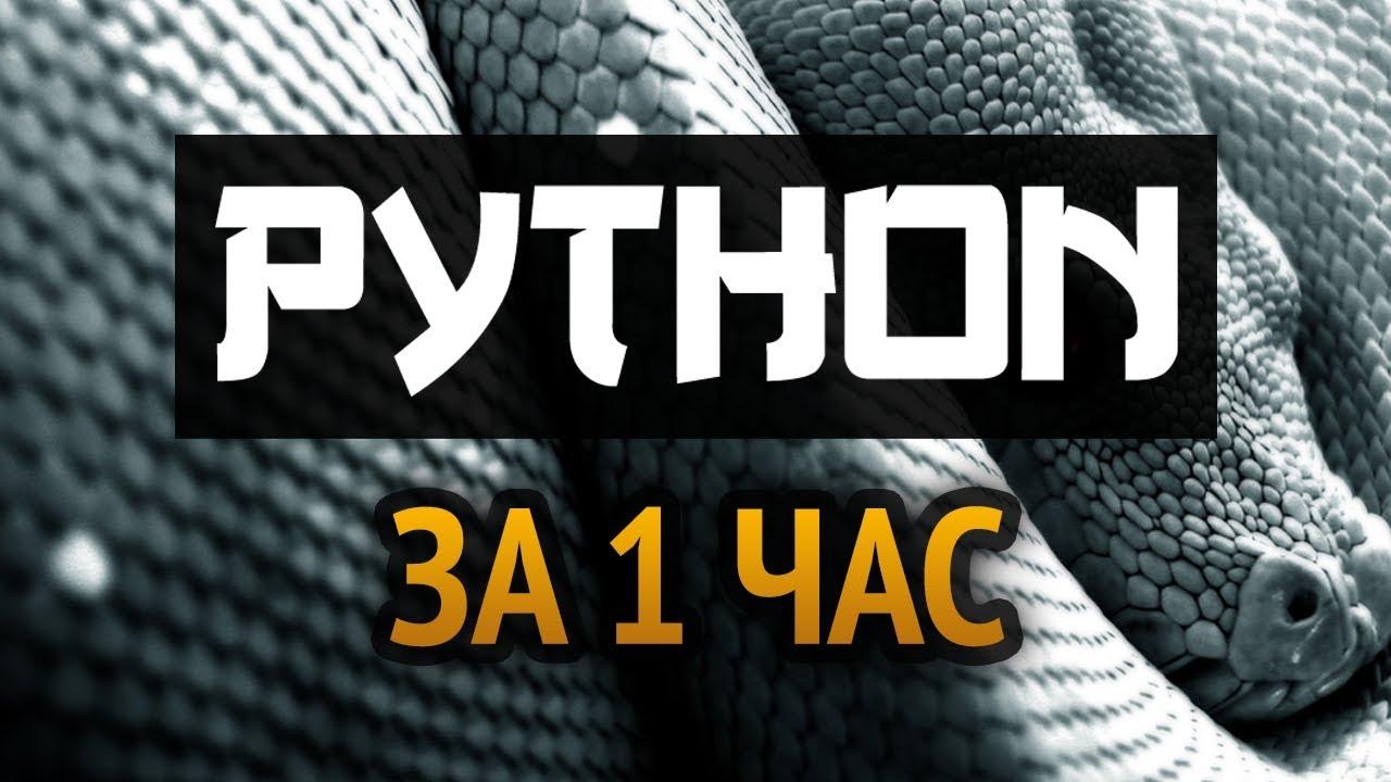 Download Учим Python за 1 час! #От Профессионала