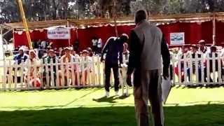 Wow Dog Trainer Performing At The 2014 Ooty Dog Show
