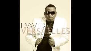 DAVID VERSAILLES - TE QUIERO VER BAILAR (AUDIO)