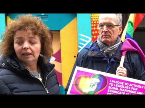 Sinn Fein would welcome support from Arlene Foster for an Irish Language Act, says Caral Ni Chuilin