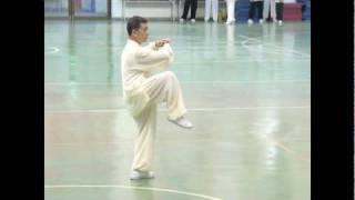 2009福爾摩沙盃 周金樹老師 64式(二)太極拳表演.mpg