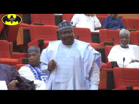 Zamfara Bandits, Not Fulani, Herdsmen Responsible For Zamfara Killings-Senate Leader