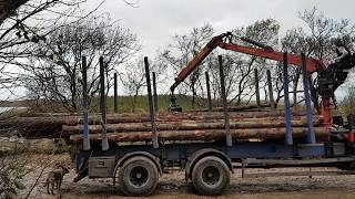 Roundwood timber delivery excitement