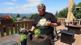 CBD Revolution in your Garden Bag
