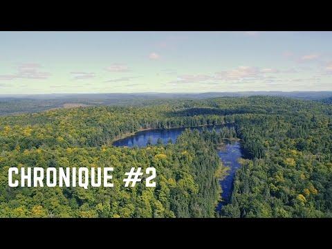 Chronique # 2 /Approche finale