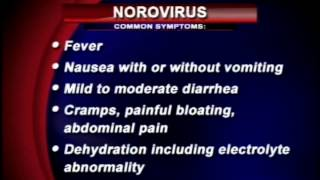 Norovirus and the symptoms to look out for