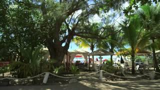 Martinique   Frankreich in der Karibik