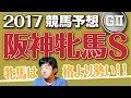 【競馬予想】 2017 阪神牝馬S 牝馬は格より勢い!!